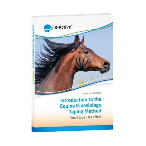 Introduction into the Equine Kinesiology Taping Method