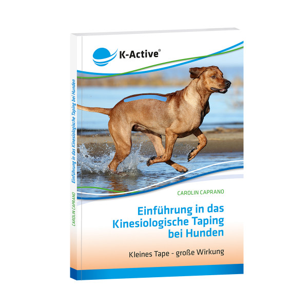 Introduction to Kinesiological Taping in Dogs