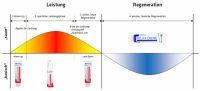 Grafik über Verwendung von Vitality Line